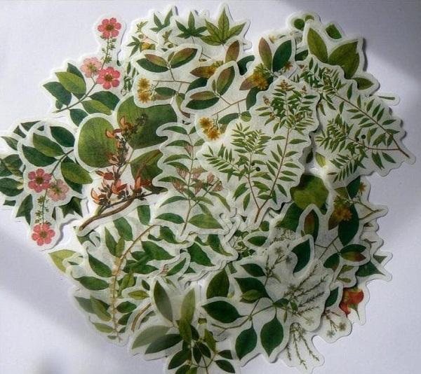 mẫu sticker cute hoa lá