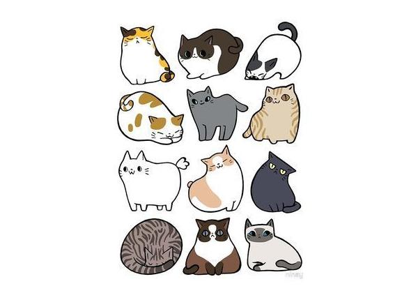 mẫu sticker dễ thương về mèo